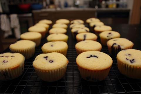 Cooling blueberry cupcakes